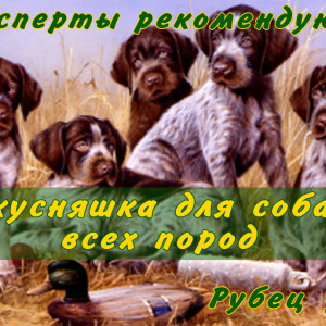 Этикетка_17х7_рубец